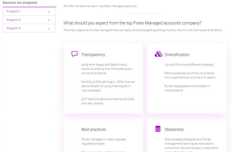 diseño web para forex